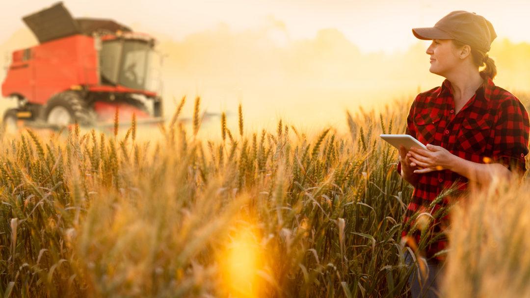 Automatisierung mobiler Landmaschinen  Automatisierte Durchführung von Pflegearbeiten durch intelligente mobile Landmaschinen. Projekt anzeigen